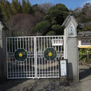 「英勝寺」江戸時代に創建された建物が今も残る鎌倉唯一の尼寺