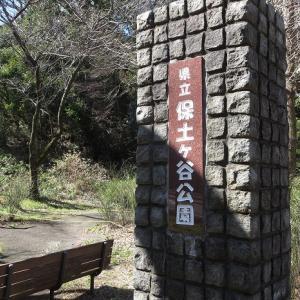「県立保土ヶ谷公園」横浜市の運動施設が充実している公園
