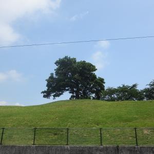 清水ヶ丘公園の見晴らし台と2つのトンネル(大原隧道・東隧道)