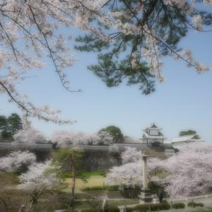 金沢城と兼六園 「11」に取り憑かれた日