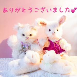 微笑みを生み出すかわいいお菓子 ~京都からこんにちは♪~