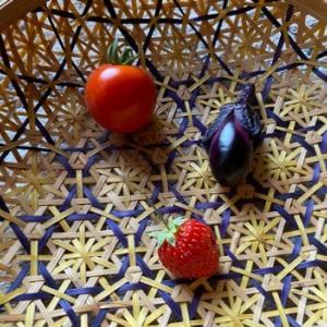 落花生は芽が出ない…茄子の一番果は早く取る