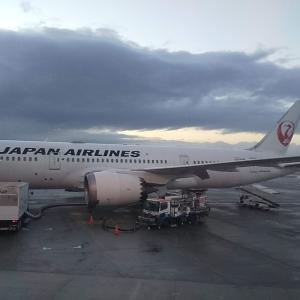 JALのヘルシンキ線、子供と一緒に乗ってみた~第1回、予約から成田まで~