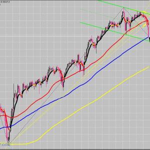FX 株価指数 ダウの今後を分析