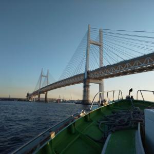 【東京湾】初めての船釣り 完全マニュアル【不安解消】