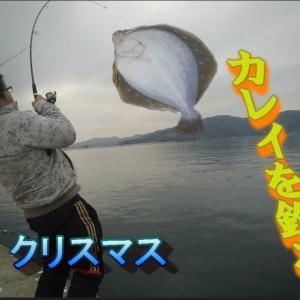 宮城県 防波堤からのカレイ釣り