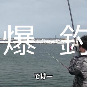 北海道 釣りBLUES どさんこTV