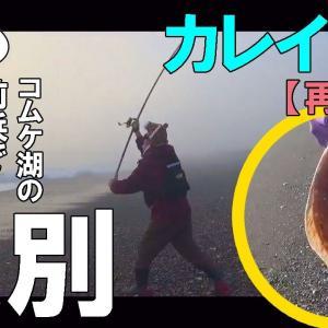 【再アップ】カレイ釣り!紋別コムケ湖の前浜で良型マガレイが釣れた!?