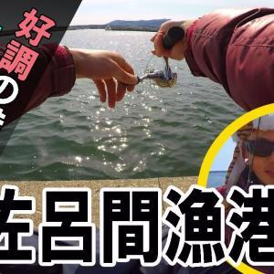 【カレイ釣り】好調の浜佐呂間漁港でカワガレイ!