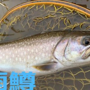 北海道道東の人気スポットには良い魚がいる!【実釣】