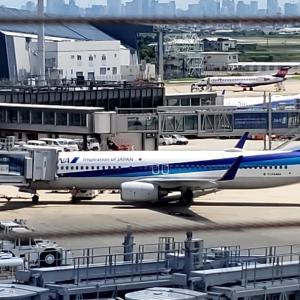 新しくなった伊丹空港に行ってきました❗♪2