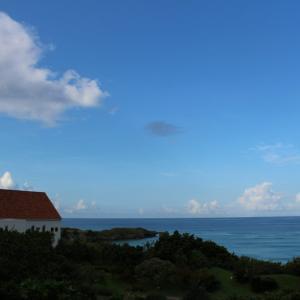 沖縄のホテルで子連れにおすすめなのは?ホテル日航アリビラで乗馬体験!