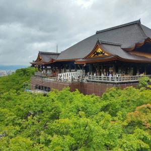 【清水寺編】そうだ子連れで京都行こう。清水の観音さん参りは最高に美味しいです