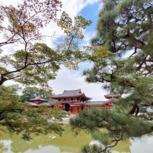 【宇治編】そうだ、子連れで京都行こう。平等院鳳凰堂と周辺グルメおすすめ5選(マップつき)