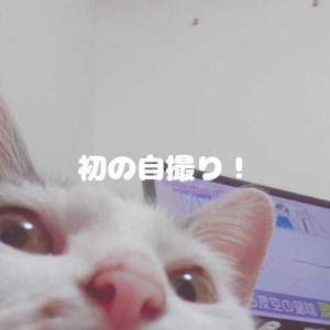 こんばんは!🌕️サボテンです🌵