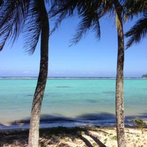 グアム政府「経済活動の一部を再開させる予定」と発表