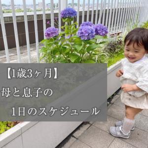 【1歳3ヶ月】母と息子の1日のスケジュール【ワンオペ平日の過ごし方】