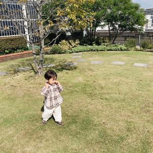 【成長記録】1歳7ヶ月になりました!1歳半健診と育児を見直すきっかけになった動画