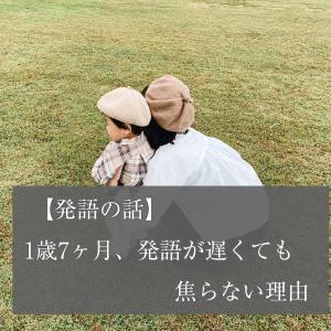 【発語の遅れ】1歳7ヶ月でもほとんど言葉が出ない息子。それでも焦らない理由