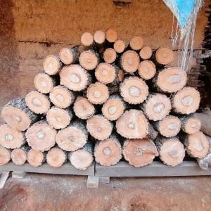 原木作りの続きの続き