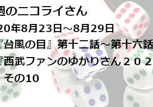 【日本語読めない卓】今週のニコライさん(2020年8月23日~8月29日)