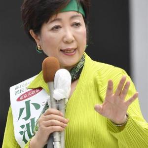 ラッキーカラーは小池ゆりこ東京都知事も使ってた