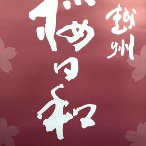 越州「桜日和」入荷しました。  ~大晴~