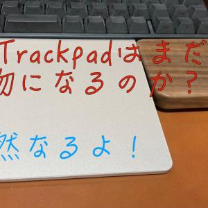 2021年のMagicTrackpad(初代:MC380J/A)レビュー【まだまだ現役で使えます!】