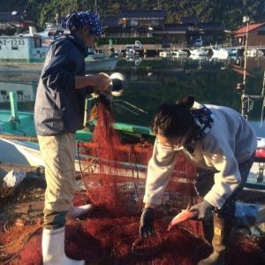 ちいさな漁業
