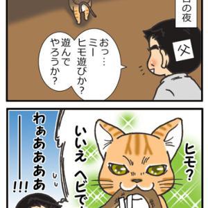 猫の思い出 その1
