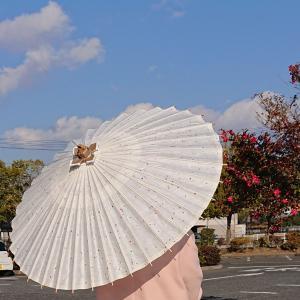 金沢和傘の日傘
