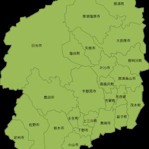 【2019年】栃木県の県民性【餃子消費量ナンバーワン?】