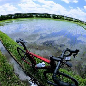 ロードバイクの走行不能時はau損保の自転車保険バイクルで帰れます!