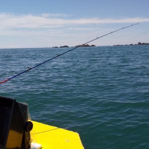 2馬力ボートで宇佐湾内釣り散歩?