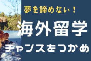 【版画家の1年間カナダ留学】チャンスを逃さない!!