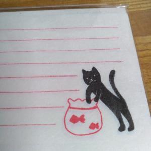 黒猫会員。