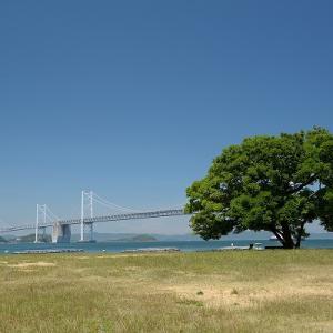 趣味の写真館 「 沙弥島からの眺め 」