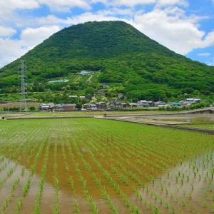趣味の写真館 「 毎度の讃岐富士2020夏その1 」