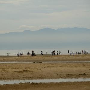 浜辺を散歩