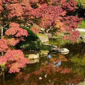 栗林公園で紅葉を楽しむ