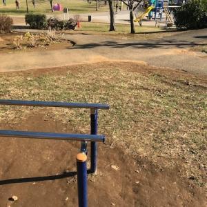 【筋トレ記録5週目】1ヶ月の振り返り・船橋の公園やっぱり熱かった【12月23日〜12月29日】
