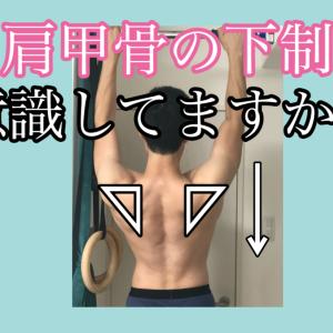 【筋トレ記録39週目】肩甲骨の下制を体に覚えさせるトレーニング【2020年8月17日〜8月23日】