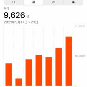 【筋トレ記録78週目】減量の経過報告#3【2021年5月17日〜5月23日】