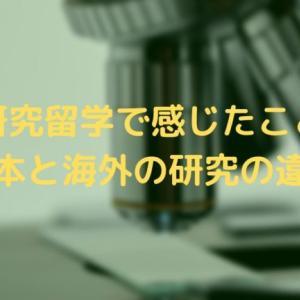 【留学で感じたこと】日本と海外の研究の違いについて