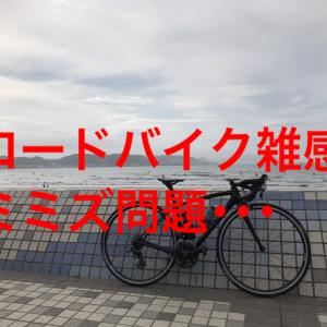 【ロードバイク雑感】ロードバイクと路面にいるミミズ問題