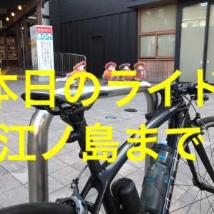 【本日のライド】(20201115)江ノ島までの60kmを淡々とペダリング