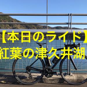 【本日のライド】(20201123)津久井湖の紅葉を見に行くだけのライド