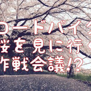 【桜を見る作戦】開花予想からすると、チャンスは2週間しかない!?