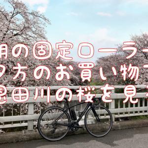 【休日の日記】天気が不安定な日曜日の記録と恩田川の桜の美しさ