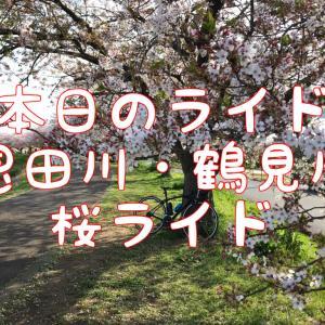 【本日のライド】恩田川・鶴見川CRで散りゆく桜と11kmTTを楽しむ!?